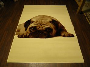 Modern 7x5ft 150x210cm Woven Backed Pug Dogs Rugs Top Quality Cream BARGAINS New